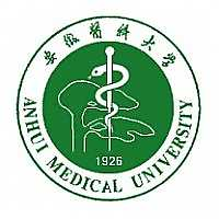 medical university of lodz application deadline
